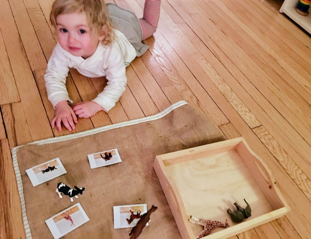 Toddler art lessons, updates and a field trip